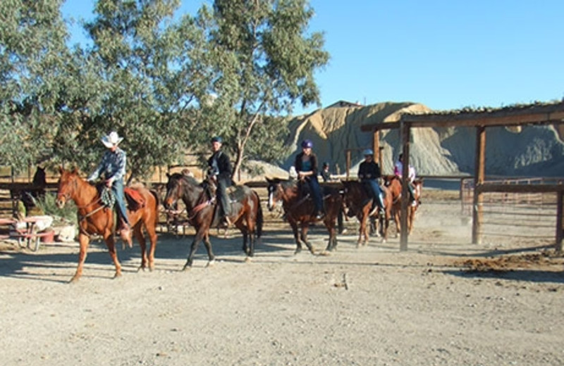 Trail Rides at Big Bend Overland Tours