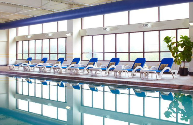 Indoor Pool at the Renaissance Asheville Hotel