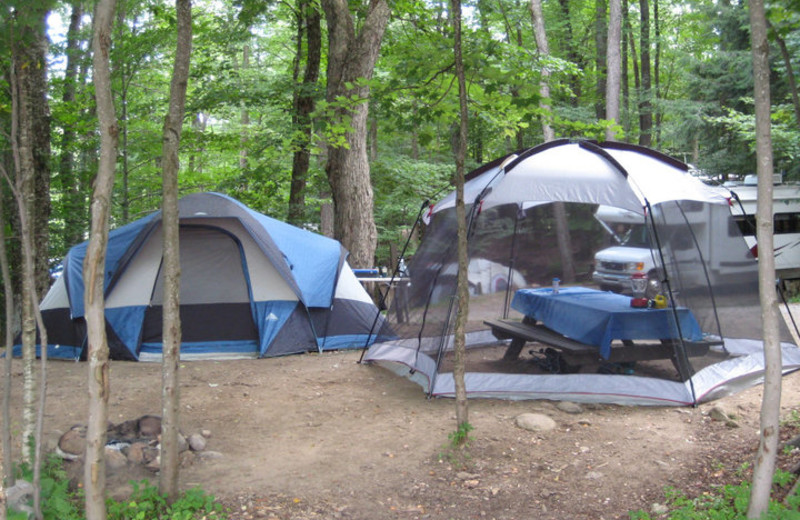 Camping site at Old Forge Camping Resort.