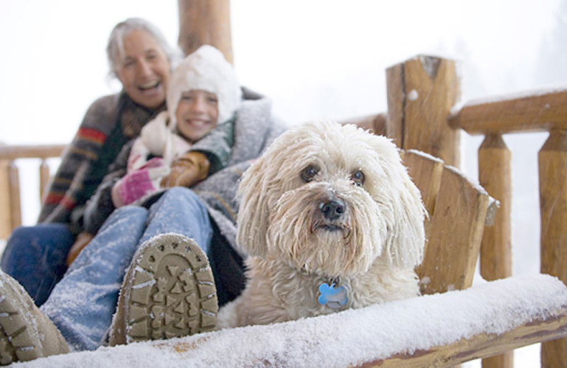 Pets welcome at Bridger Vista Lodge.