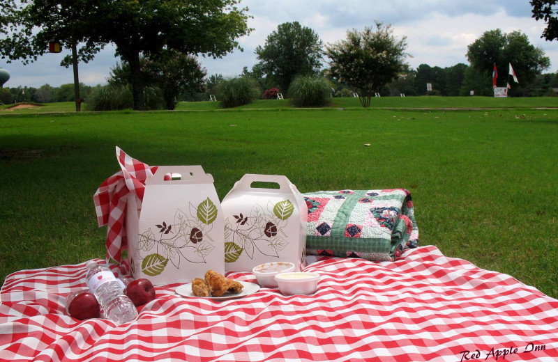 Picnic at Red Apple Inn and Country Club.