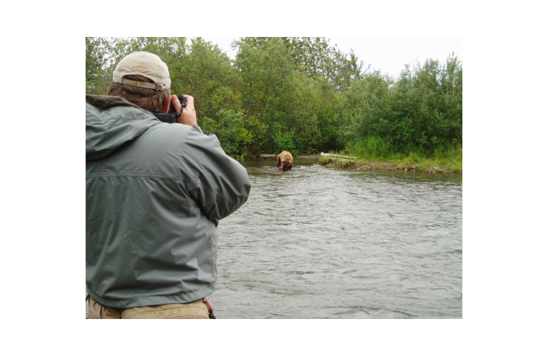 Bear watching at Naknek River Camp.