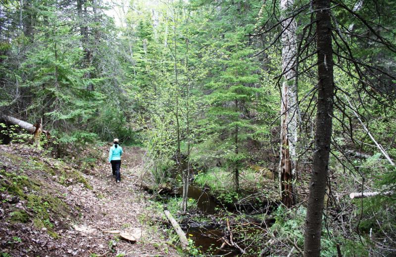 Hiking through the woods at Aqua Log Cabin Resort.