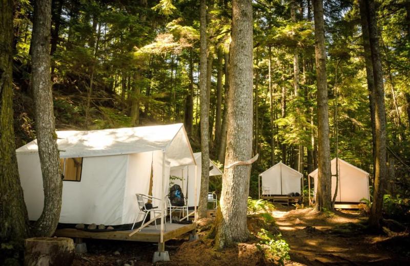 Tents at Orca Camp.