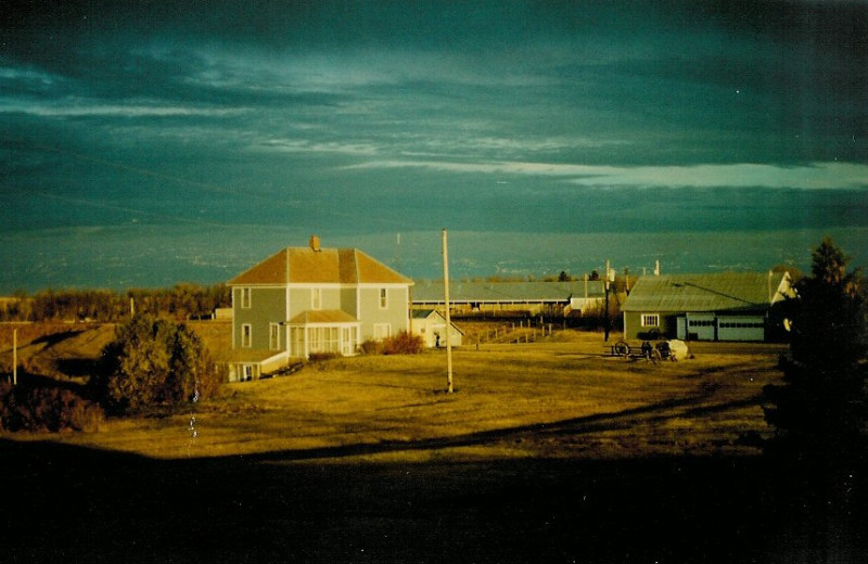 Exterior view of Betty's Hunting Lodge.