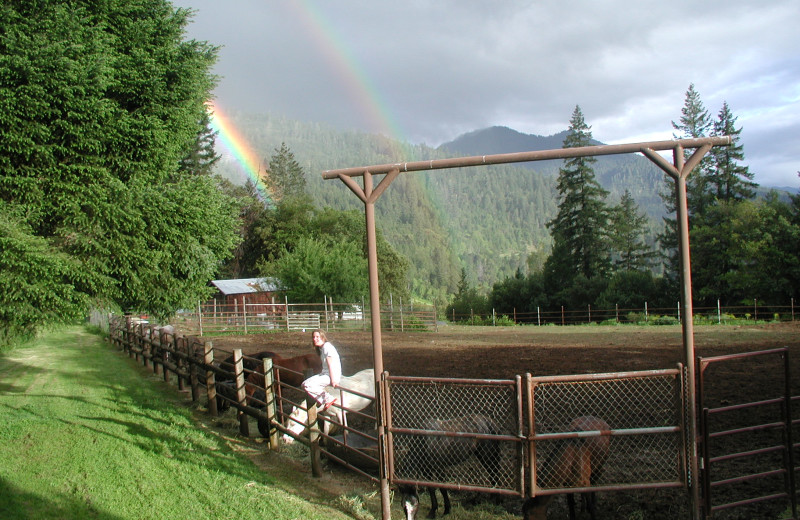Corral at Marble Mountain Guest Ranch.