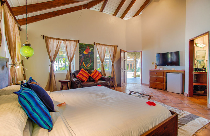 Guest room at Jaguar Reef Lodge.