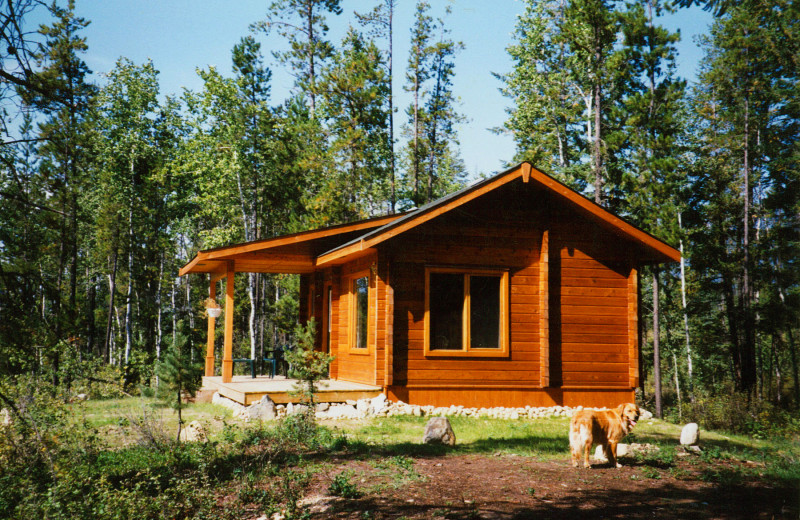 Mica mountain lodge log cabins side by side atv tours for Cottage packages manitoba