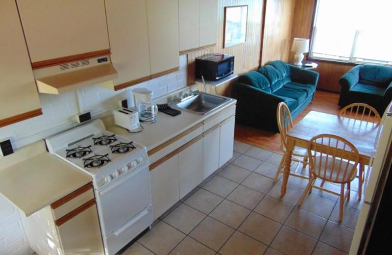 Cabin kitchen and living room at The Depe Dene Resort.