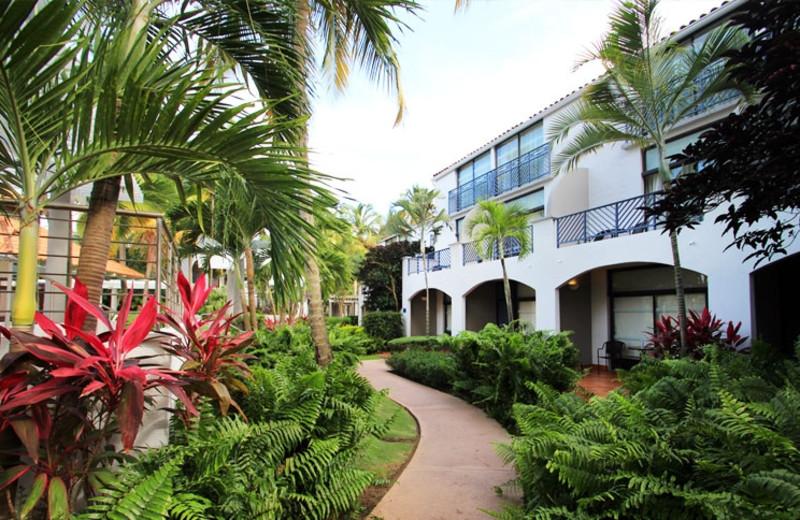 Exterior view of Wyndham Garden at Palmas del Mar.