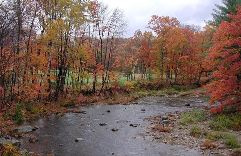 Fall creek at Riverbank Motel & Cabins.