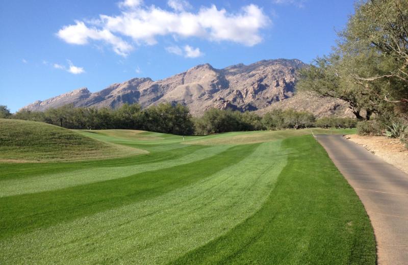 Golf greens at The Lodge at Ventana Canyon.