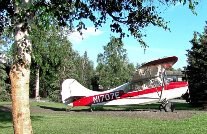 Champ plane at Bear Lodge.
