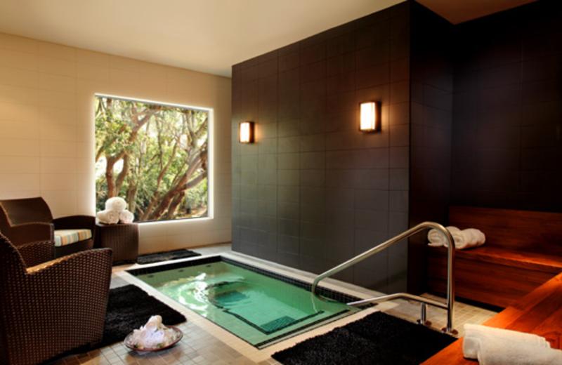 Hot Tub View at  The Westin Hilton