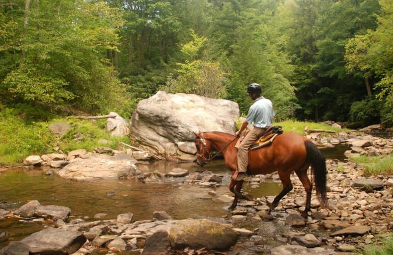 Horseback Riding at The Resort at Glade Springs