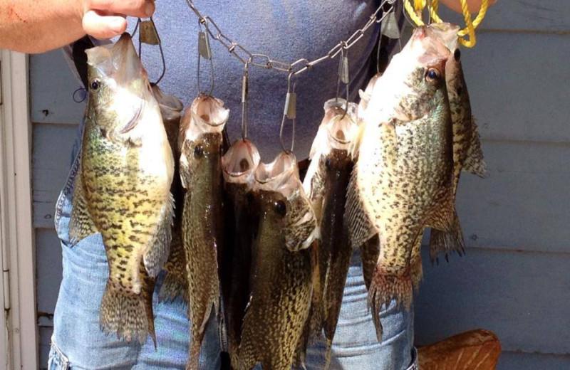 Fishing at Alhonna Resort.