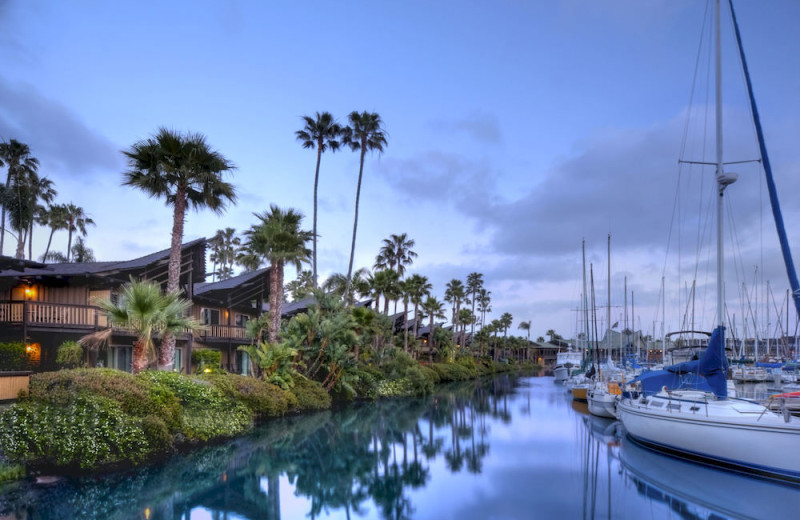 Marina near Point Loma Inn and Suites.