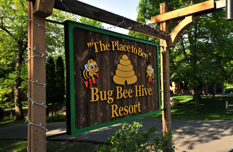 Welcome to Bug-Bee Hive Resort.