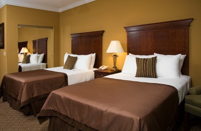 Guest room at Mountain Lodge & Conference.
