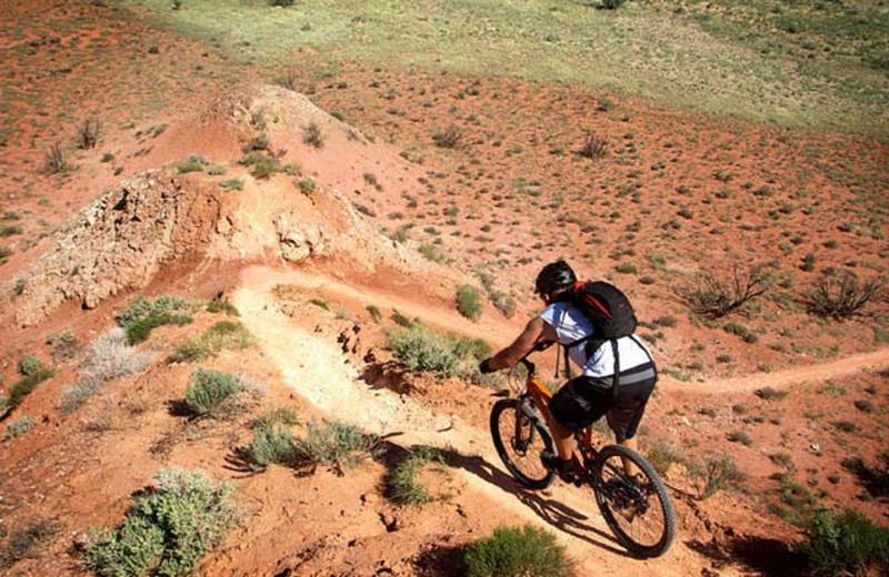 Biking at Hilton Tucson El Conquistador Golf & Tennis Resort.