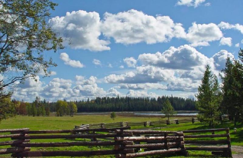 Beautiful Views at Siwash Lake Ranch