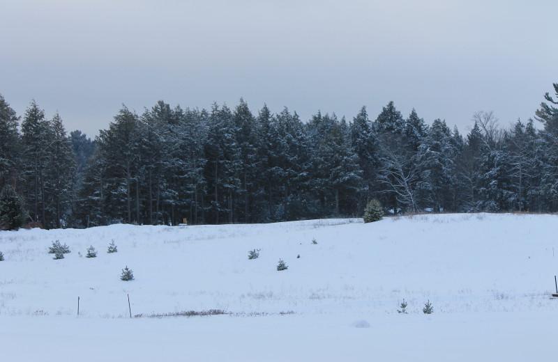Winter scene at Northernaire Resort.