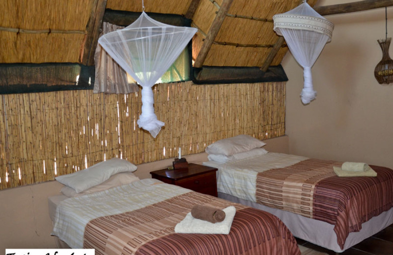 Guest room at Elephant Sands Safari Lodge.