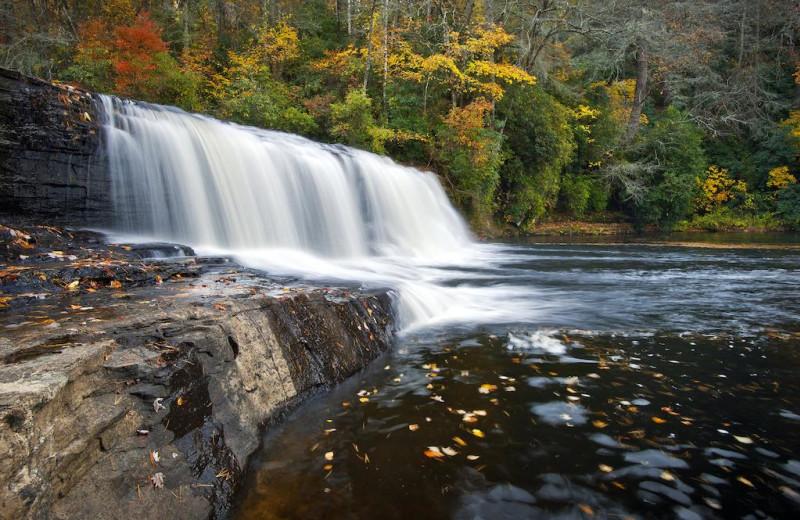 Waterfall near Carolina Mornings.