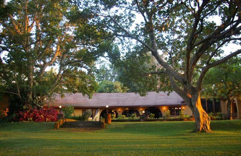 Exterior view of Bohm's Zeederberg Country House.