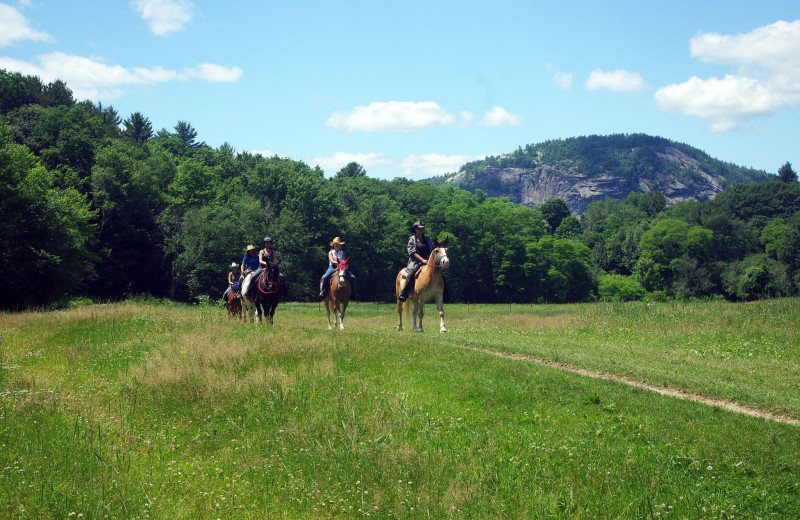 Horseback riding at Farm by the River Bed & Breakfast with Stables- on 70 scenic acres  with panoramic Mountain views.