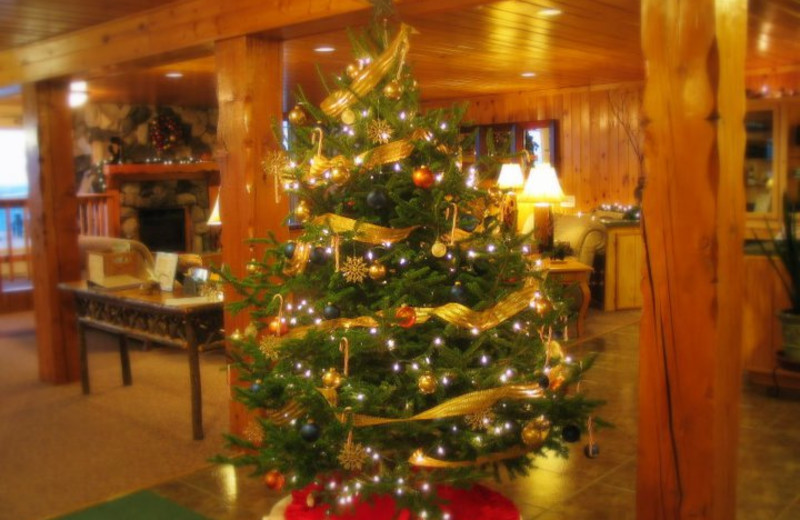 Christmas tree in the lobby at Chateau LeVeaux.