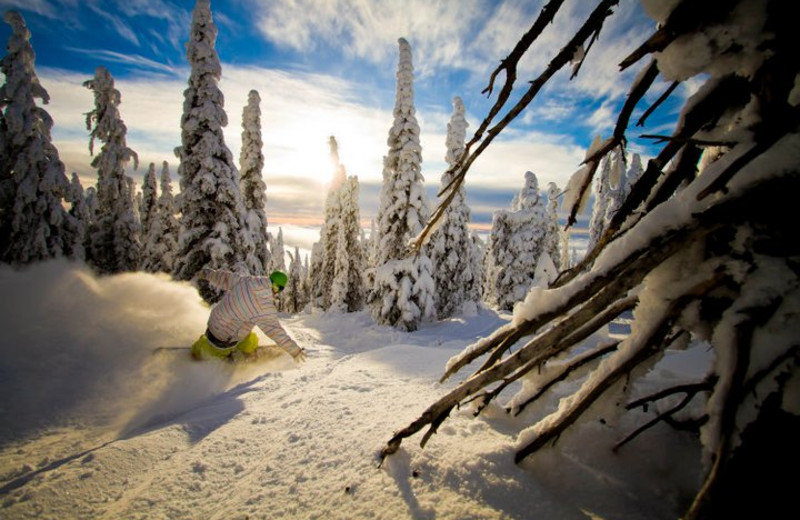 Skiing at Big White.