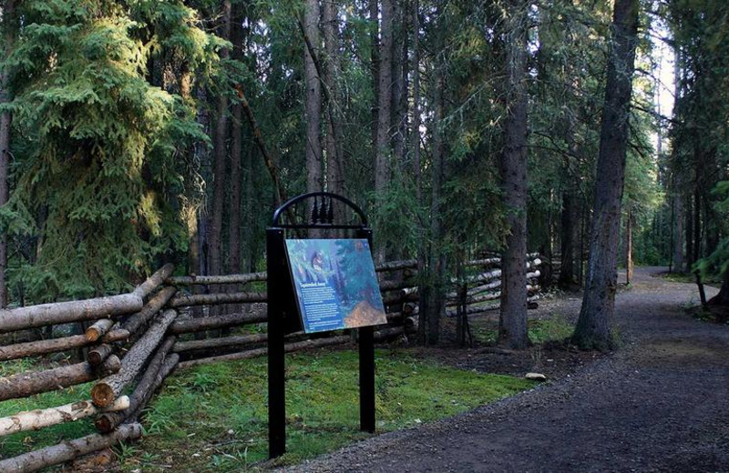 Wildlife sanctuary interpretive trail at Bear Lodge.