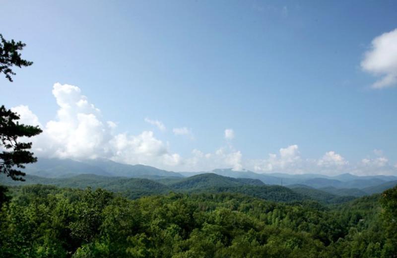 Mountain view at Jackson Mountain Homes.