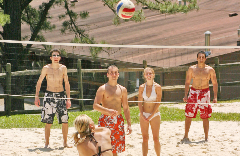 Family playing volleyball at ACE Adventure Resort.