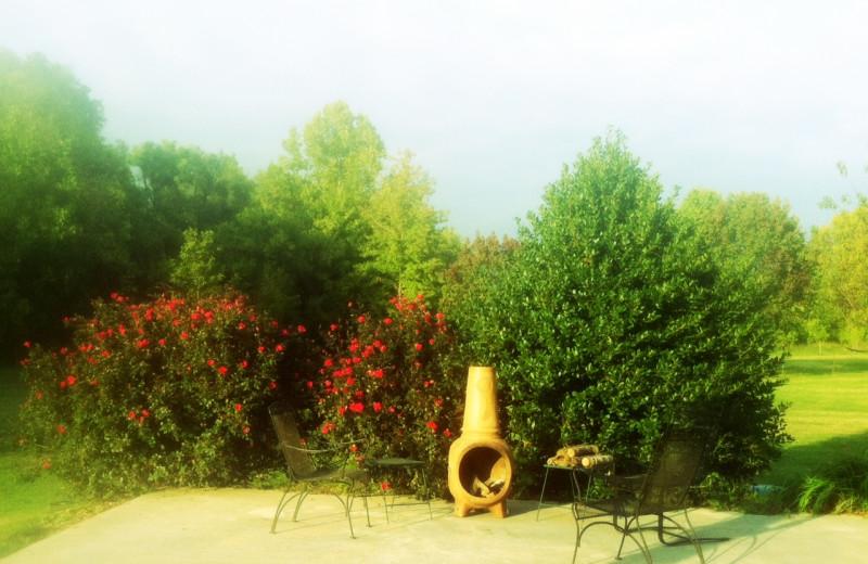 Garden view at The Abbe House Inn.