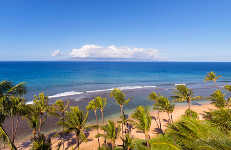 Beach Views at Hyatt Kaanapali Beach