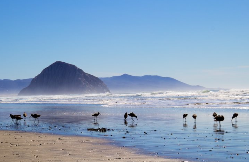 URelax Vacation Rentals (Morro Bay, CA) - Resort Reviews