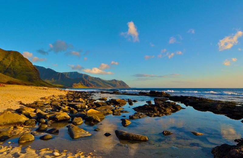 Beach near Hawaiian Vacation Rentals.