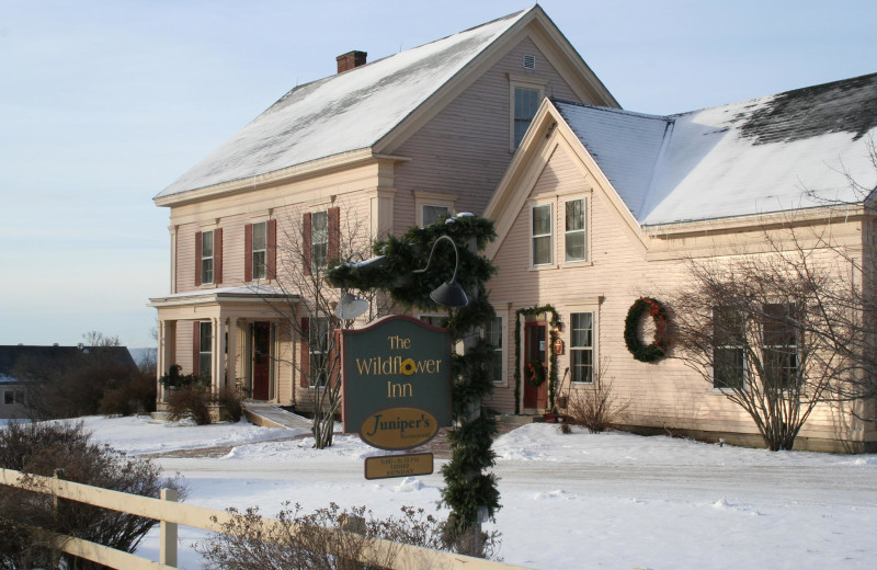 Winter at The Wildflower Inn.