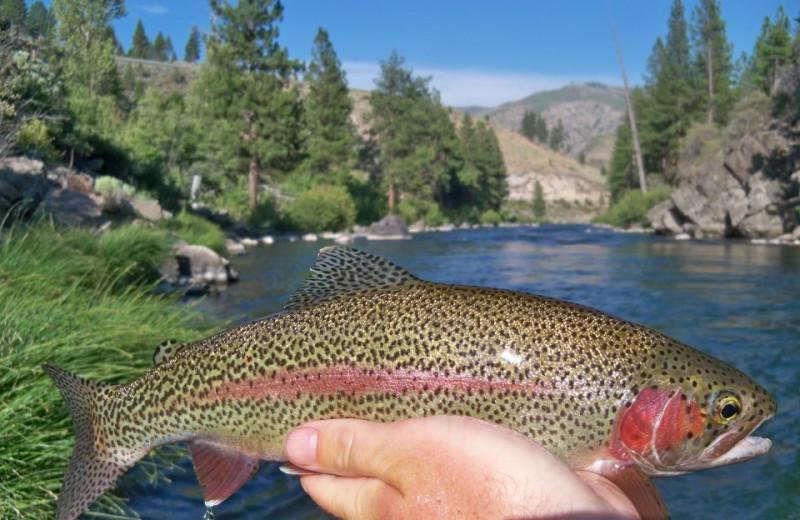 Fishing at Resort at Squaw Creek