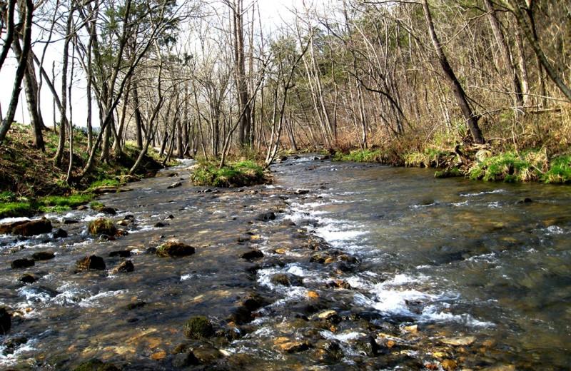 Creek at River Ridge Inn.