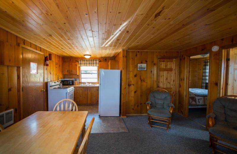 Cabin living room at Snyder's Idlewild Resort.