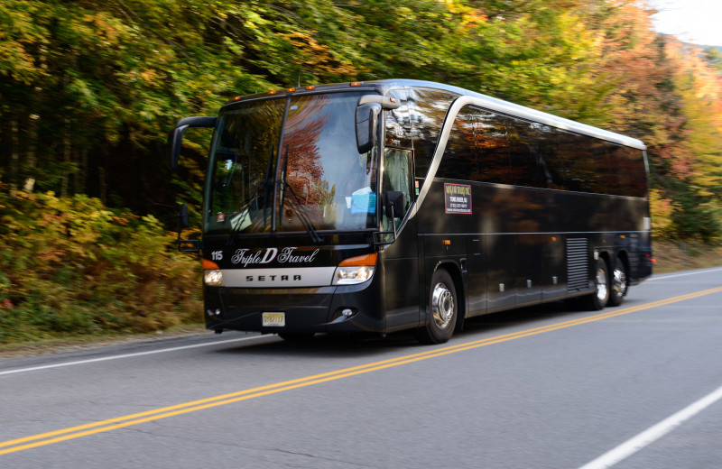 Bus tours at Snowy Owl Inn and Resort.