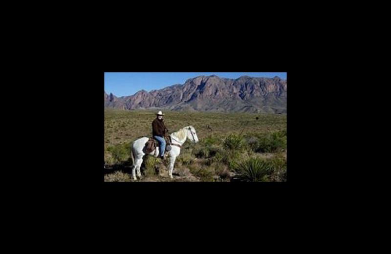 Horseback riding at Big Bend Resort & Adventures.