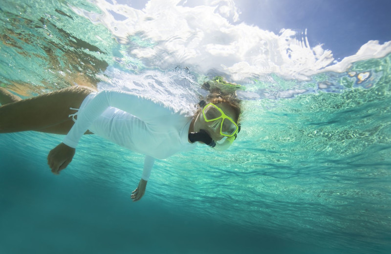 Snorkeling at Tranquility Bay Beach House Resort.