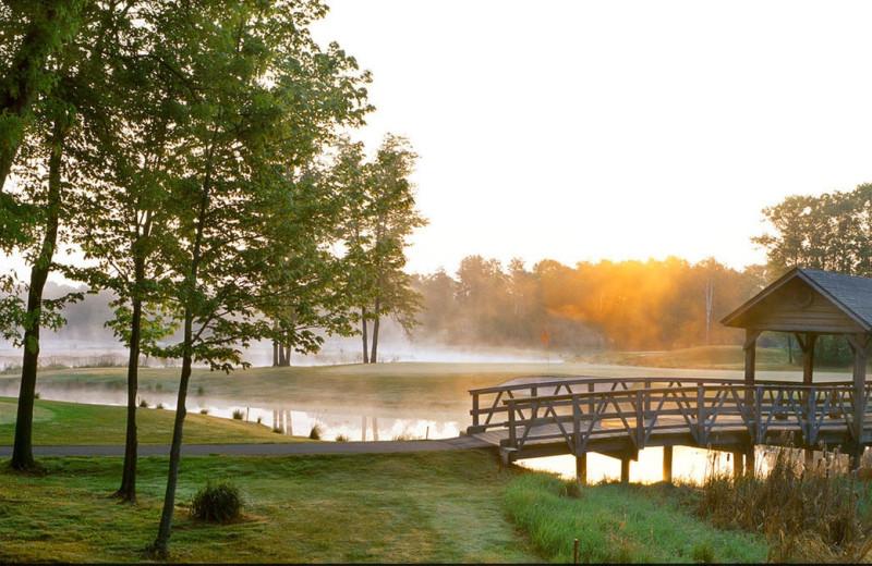 Golf at Madden's on Gull Lake.