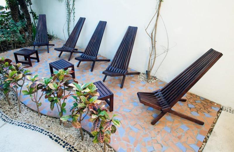 Patio view at Aqualuna Hotel.