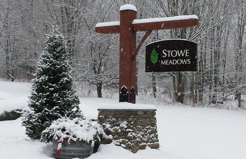 Winter grounds at Stowe Meadows.