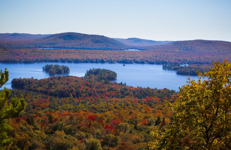 Fall leaves at Old Forge Camping Resort.